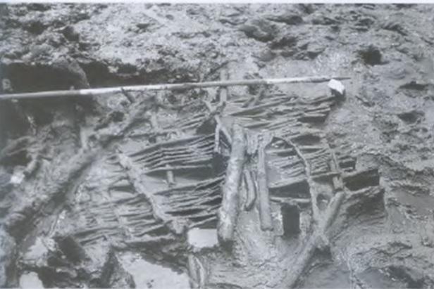 Trackway exhumed from North Ferriby in the Humber Wetlands (Van Der Noort 2004).